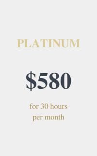 Platinum package - Virtual Assistant Services